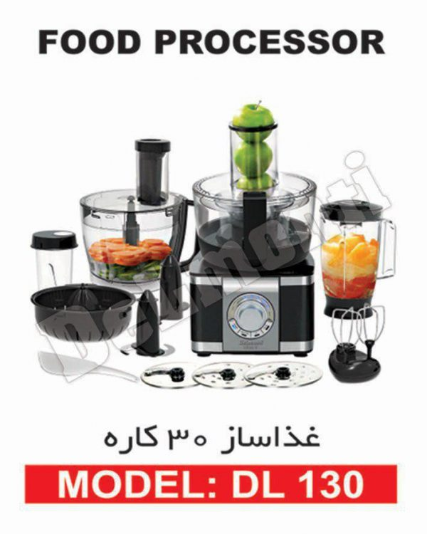 غذاساز 30 کاره دلمونتی DELMONTI مدل DL 130
